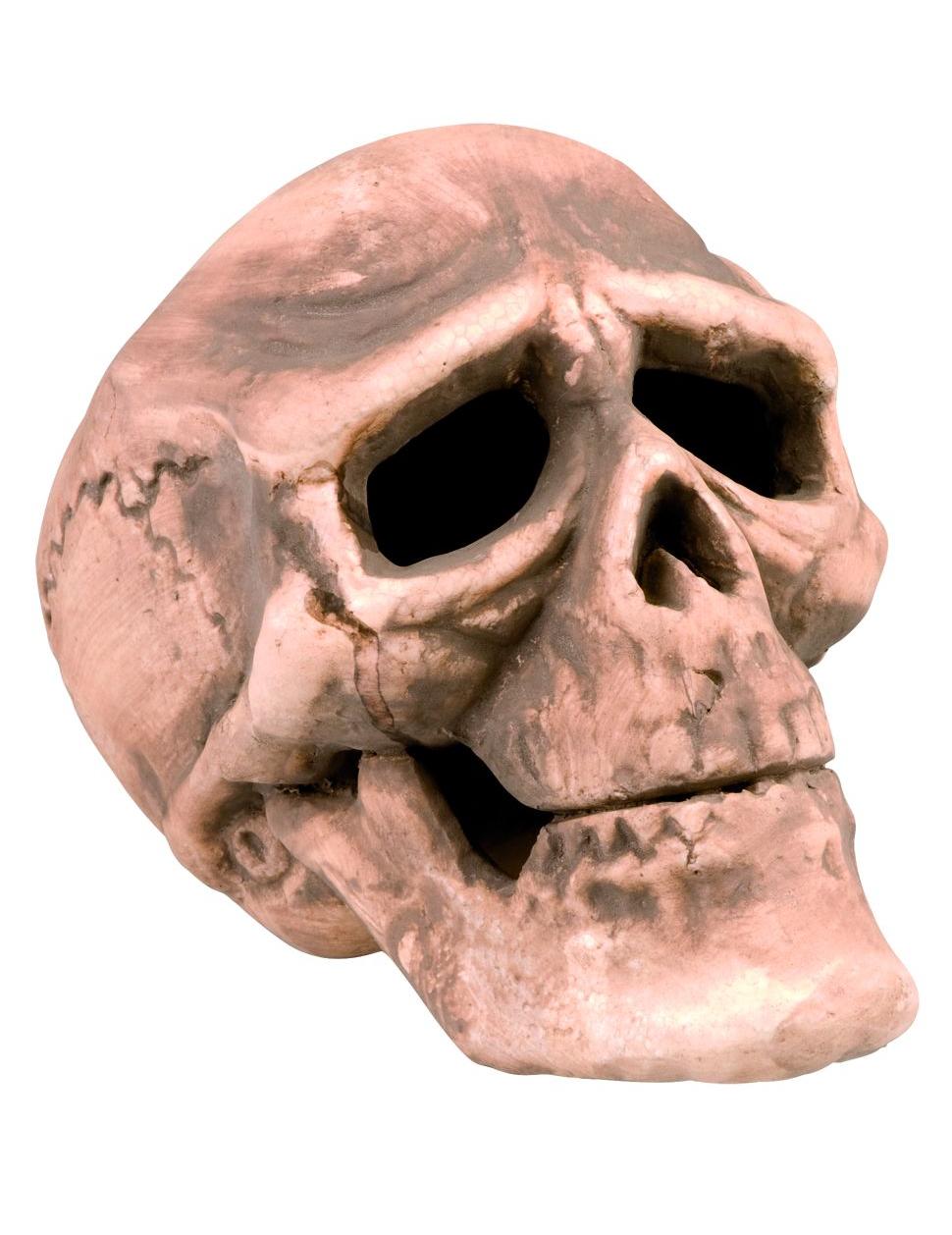D coration halloween - Tete de mort style ...