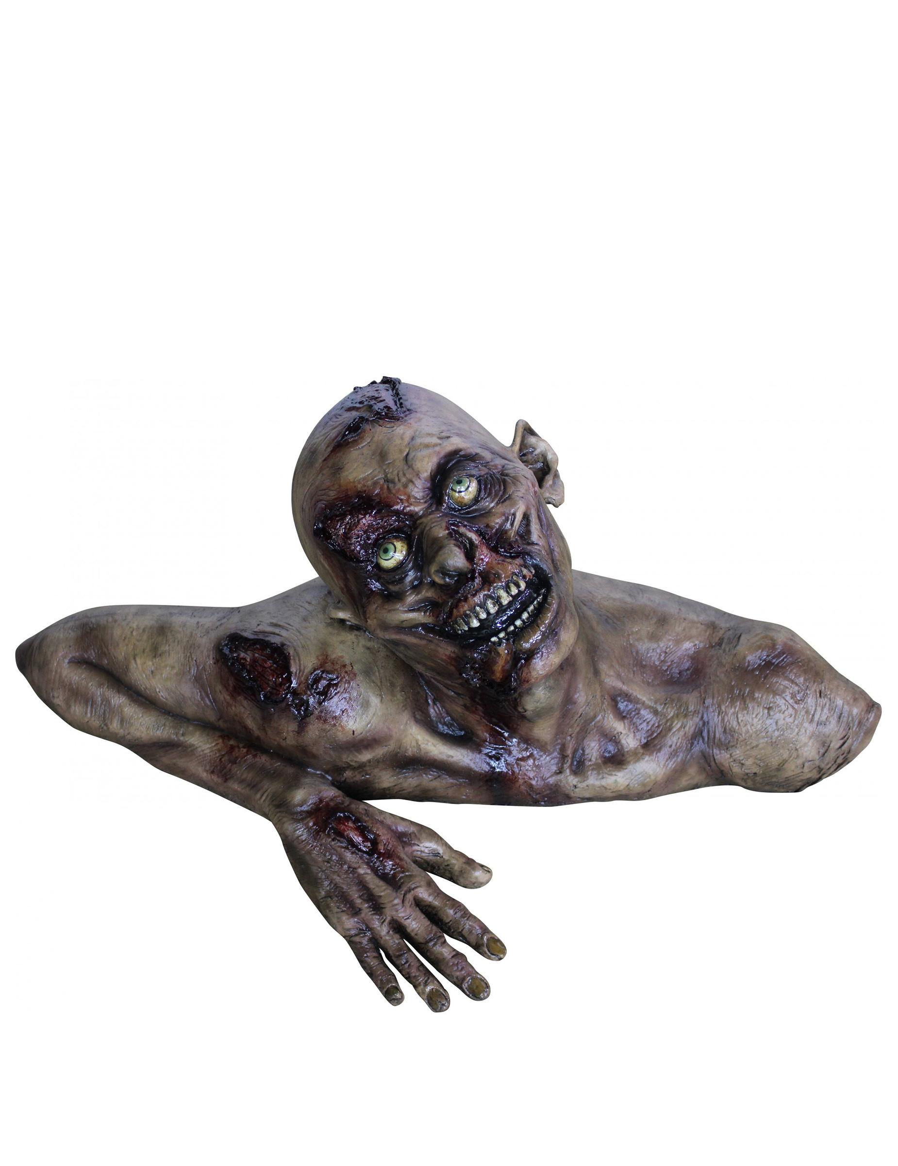 buste zombietaille r elle halloween en d cor deguise toi. Black Bedroom Furniture Sets. Home Design Ideas