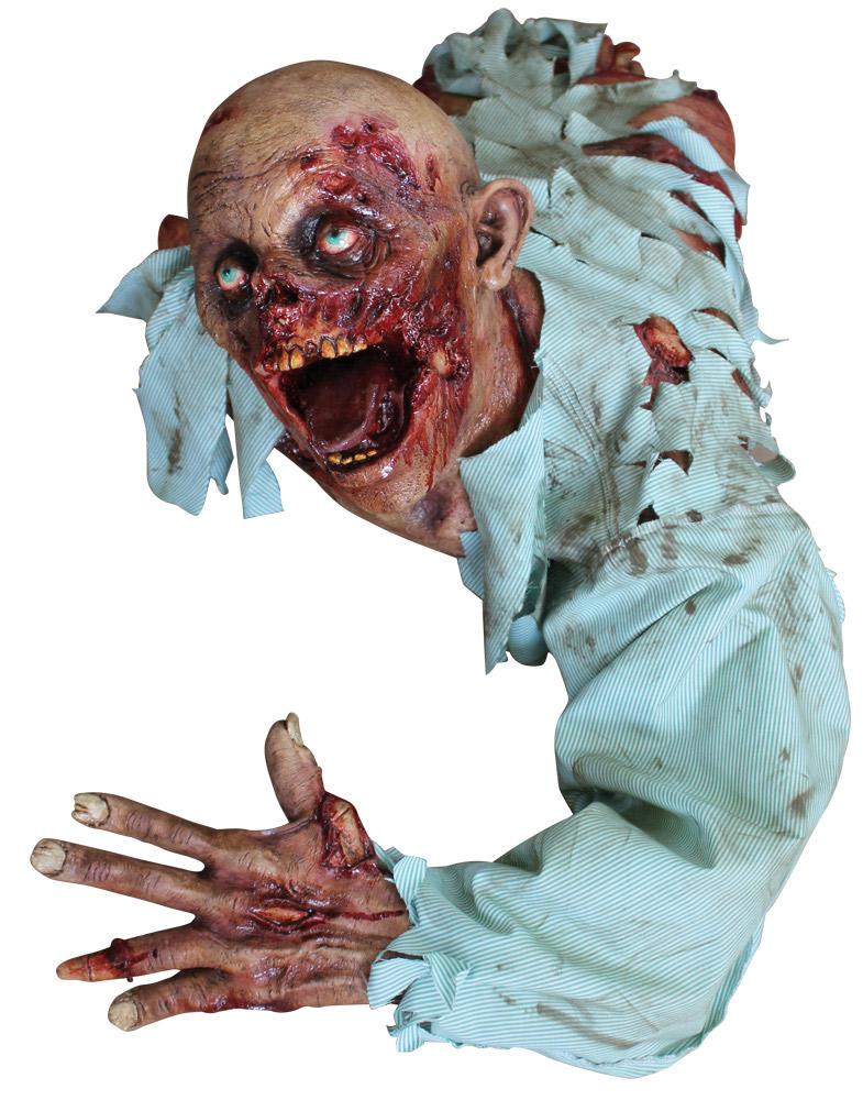D coration zombie halloween deguise toi achat de for Decoration zombie