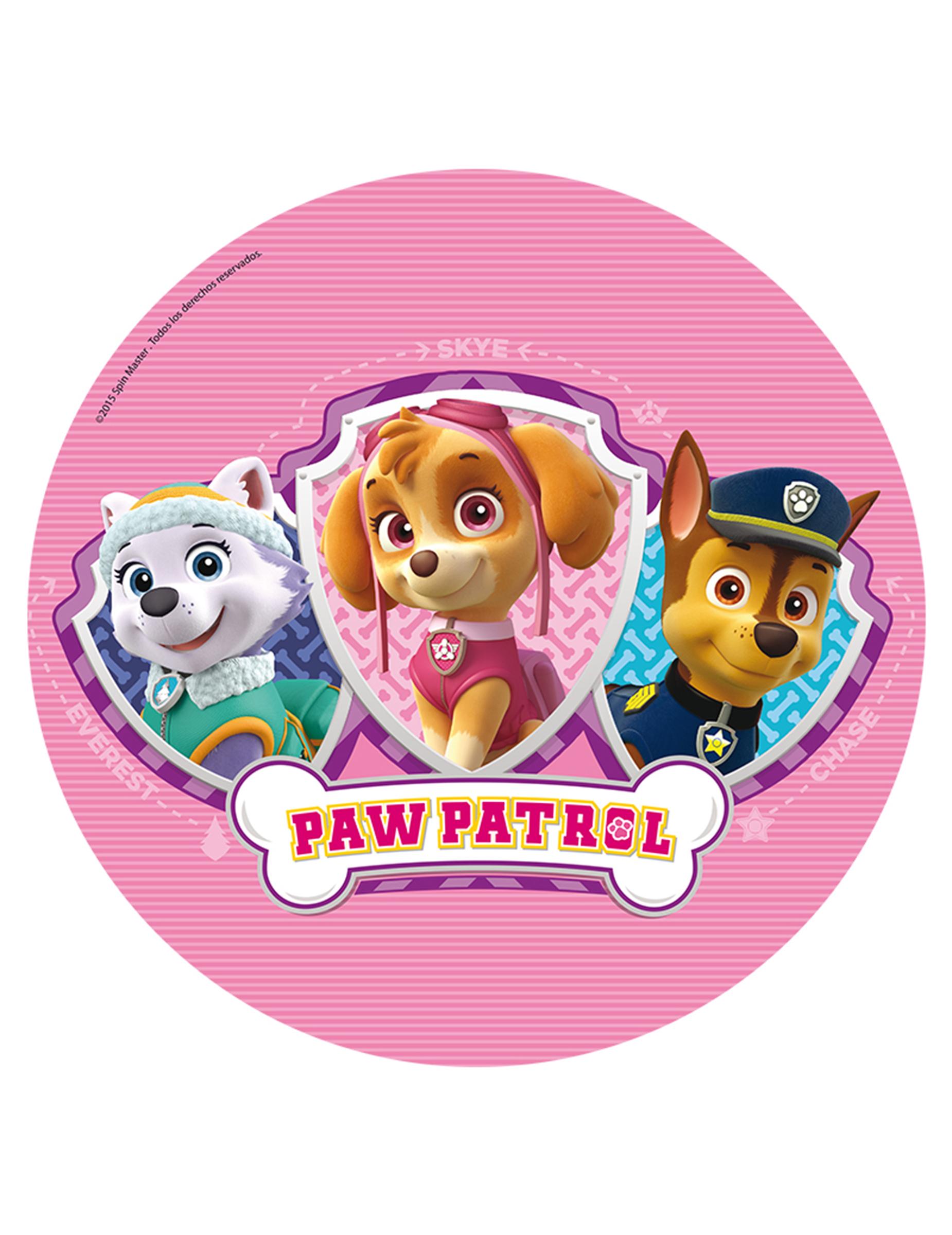 disques azyme 20 cm pat 39 patrouille paw patrol achat de decoration animation sur vegaoopro. Black Bedroom Furniture Sets. Home Design Ideas