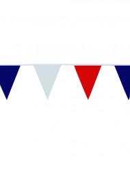 Guirlande de supporter fanions tricolores