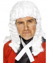 Perruque juge homme
