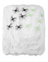 Décoration toile d'araignée blanche avec araignées 500 g Halloween