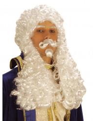Perruque blanche François 1er homme