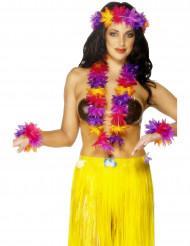 Kit tricolore Hawaï