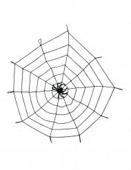 Toile araignée noire avec araignée