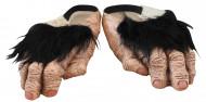 Chaussures pieds chimpanzé adulte