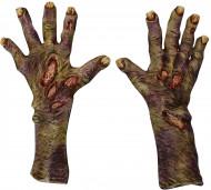 Gants zombie décomposé adulte Halloween