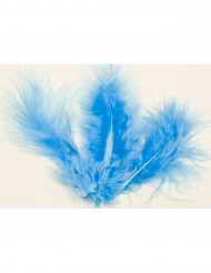 20 plumes de décoration bleu