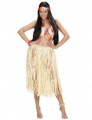Set Hawaï multicolore adulte