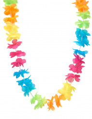 Collier Hawaï multicolore adulte