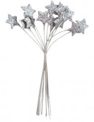 Bouquet 12 étoiles Argent