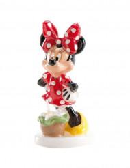 Bougie Minnie™