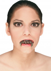 Dentier faux acier