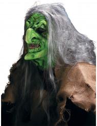 Maquillage masque de Sorcière des marais Halloween adulte