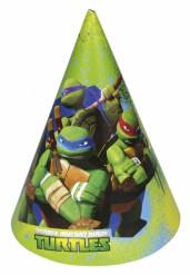 6 Chapeaux de fête Tortues ninja™