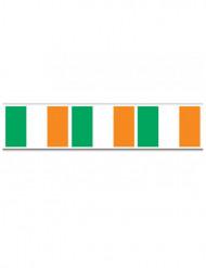 Guirlande drapeau irlandais St Patrick