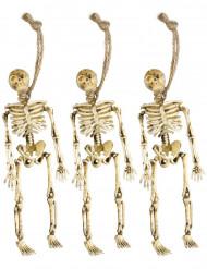 Décorations squelettes pendus Halloween