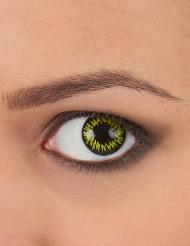 Lentilles fantaisie oeil de loup-garou jaune adulte