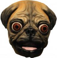 Masque petit chien
