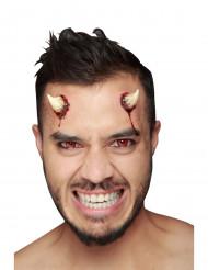 Fausses cornes de diable