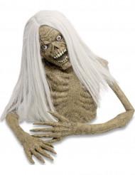 Décoration torse zombie 100 cm halloween