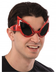 Lunettes adulte Spiderman™