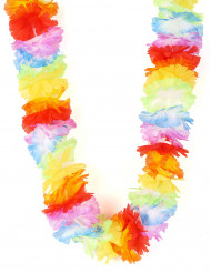 Collier Hawaï multicolore