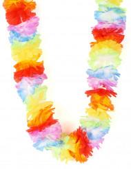 Collier Hawaï multicolore