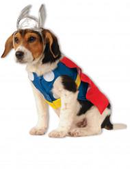 Déguisement pour chien Thor™