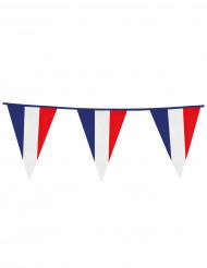 Guirlande à fanions drapeaux supporter France 10 m