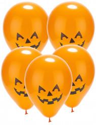 5 Ballons led citrouille Halloween