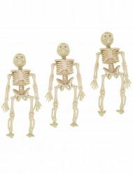 3 Décorations à suspendre squelettes