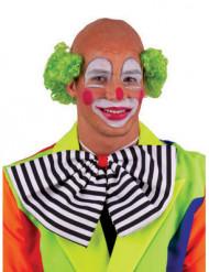 Perruque chauve clown verte adulte