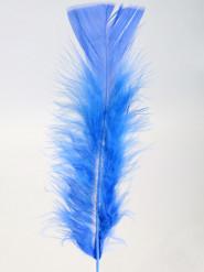 100 plumettes bleues