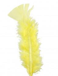 100 plumettes jaunes
