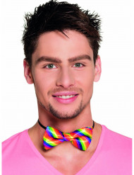 Noeud papillon multicolore adulte
