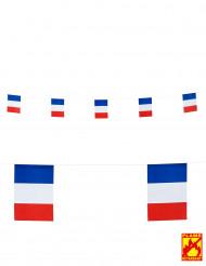 Guirlande drapeaux France 15 X 20 cm