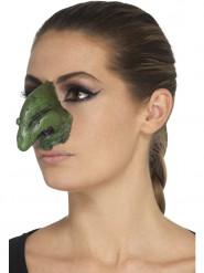 Prothèse en mousse latex nez de sorcière adulte Halloween