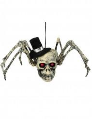 Décoration squelette araignée Halloween 23 x 30 cm