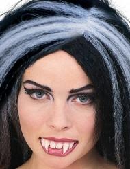 Dentier de vampire blanc avec colle dentaire