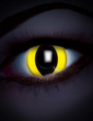 Lentilles fantaisie UV œil reptile jaune adulte