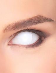 Lentilles fantaisie œil blindé blanc adulte