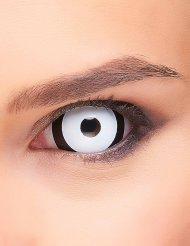 Lentilles fantaisie sclera œil noir et blanc adulte