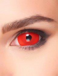 Lentilles fantaisie sclera œil rouge adulte