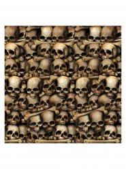 Décoration catacombes squelettes Halloween