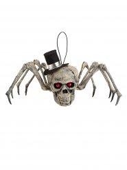 Squelette d'araignée avec tête de mort