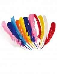 12 Plumes indiennes multicolores 30 cm