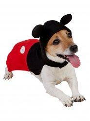 Déguisement pour chien Mickey Mouse™