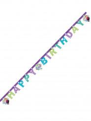 Bannière Happy Birthday La Reine des Neiges™